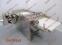 Круасаномат Rondo Doge. Формування круасанів (порізка та загортка). Швейцарія. Б/У - 2